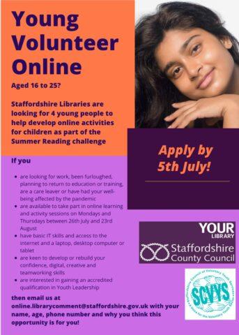 Young Volunteer Online Flyer 343x480